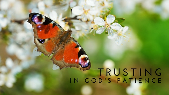 Trusting in God's Patience