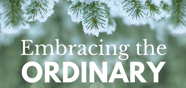 Embracing the Ordinary: A Reflection on Ordinary Time | sarahdamm.com