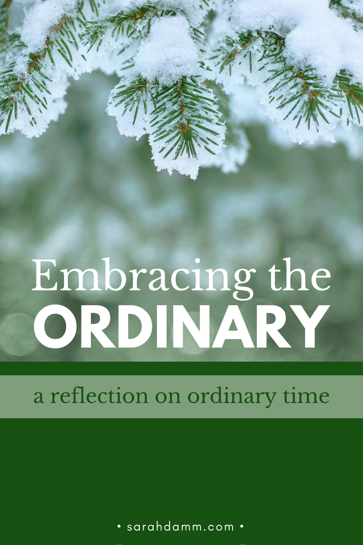 Embracing the Ordinary: A Reflection on Ordinary Time | sarahdammc.om