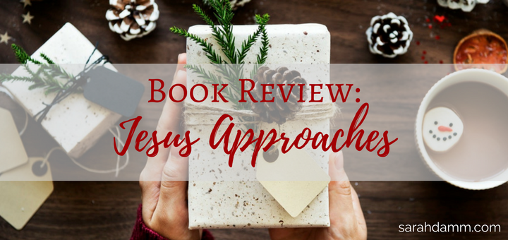 Jesus Approaches Review: Learning from Women in the New Testament | sarahdamm.com