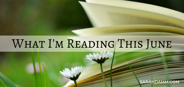 An Open Book: What I'm Reading This June | sarahdamm.com