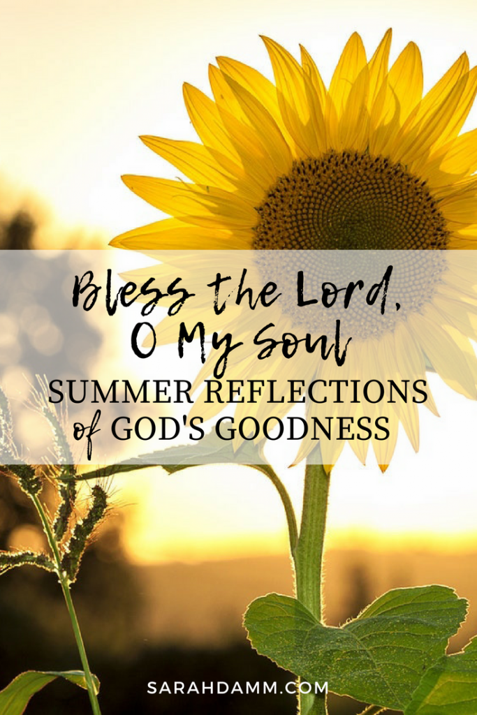 Bless the Lord, O My Soul: Summer Reflections of God's Goodness | sarahdamm.com