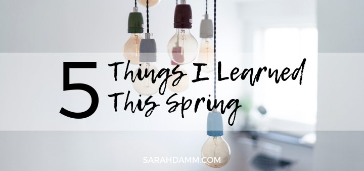 What I Learned This Spring | sarahdamm.com