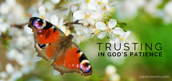Trusting in God's Patience | sarahdamm.com
