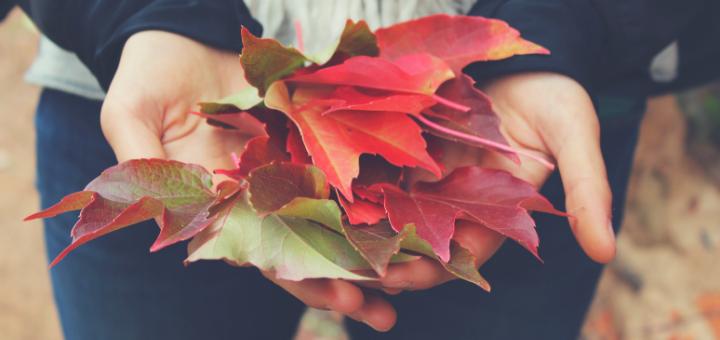 Gratitude: The Virtue of Togetherness | Resetting the Rhythms of Life series | sarahdamm.com