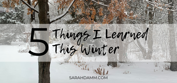 What I Learned This Winter | sarahdamm.com